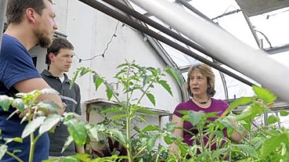 Alice Julier tours a greenhouse at Eden Hall Farm with Mikal Merlina, left, owner of the rhizosphere LLC (a local/organic food consulting and marketing firm), and Dan Dalton, a graduate student at the University of Pittsburgh.