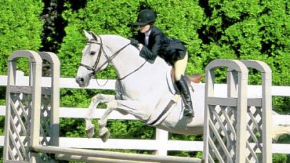 Barbara Halpern and Moto were winners at the Sewickley Hunt Horse Show in May.