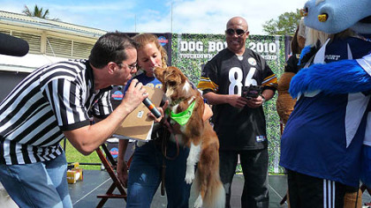 Hines Ward looks on as the runner-up dog from Thursday's Dog Bowl is attended to. Ward was a host at Dog Bowl 2010: Touchdown Treats Championship, presented by Hill's Science Diet.