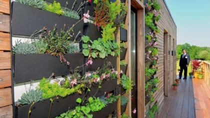 A vertical garden is a feature of one side of the Bayer Material Science EcoCommericial Building Conference Center at the company&#039;s Robinson headquaters.