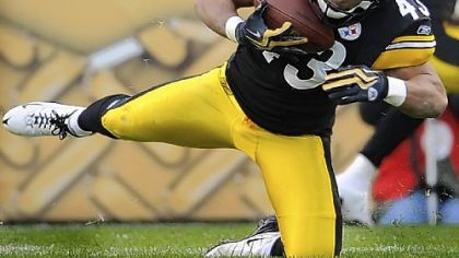 Steelers safety Troy Polamalu was hampered by knee injuries last season.