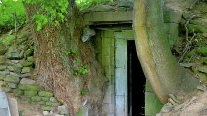 The old root cellar at Eden Hall Farm in Richland is being studied and restored by Chatham University. Over time, the flanking trees crumbled the root cellar's vestibule, now removed.