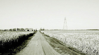 A cornfield near Alice, N.D., where Steinbeck supposedly camped overnight and met an itinerant Shakespearean actor in October 1960.