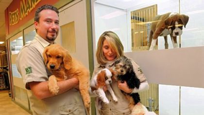 Eric and March Caplan hold some of the last non-shelter puppies they have for sale at their Petland store in East Liberty. Once these puppies have been sold, the store will only have shelter dogs and kittens for sale.