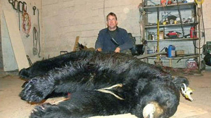 Bow hunter David Price bagged Bozo, the heaviest black bear on record in the state, near Fernwood Resort. Bozo, however, had been amply fed by humans.