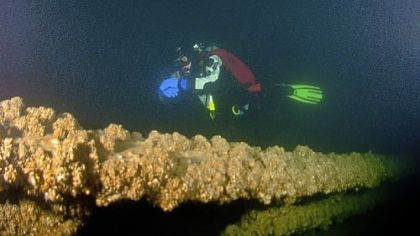 Diver Dave Miller explores the wreck of the schooner Washington Irving during a dive in June in Lake Erie. Cold water and other challenges require wreck divers to be highly skilled.