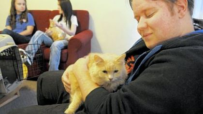 Junior Jeremy Boughman, 21, of Lancaster, Ohio, craddles his cat Setsuna in the lobby of Monroe Hall at Washington & Jefferson College. The school has designated Monroe Hall as a pet-friendly dorm.