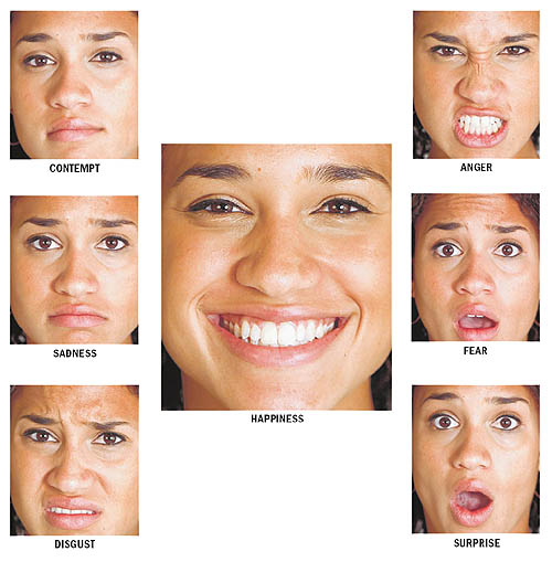 the universal expressions of emotion essay By: claire nassif & greer shellow when given an array of pictures with human faces, many people can distinguish the emotions that are associated with different facial expressions.
